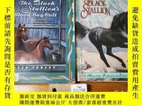 二手書博民逛書店The罕見Black Stallion s Blood Bay Colt   The young black st