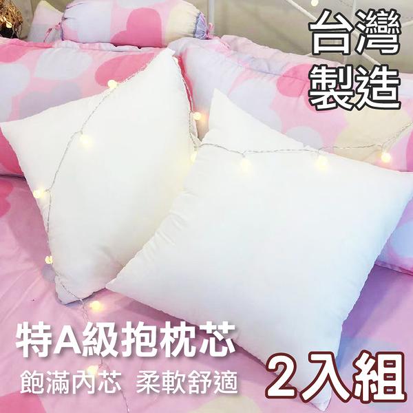 枕心、枕芯、抱枕、純白表布(2入) -50x50cm MIT台灣製造、高品質、柔軟舒適、寢居樂
