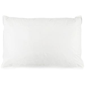 HOLA 四區式 功能型 長效防蟎羽絨枕 DOWN PILLOW