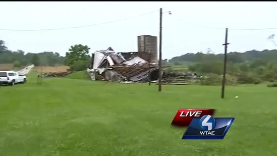 3 barns destroyed in path of apparent tornado