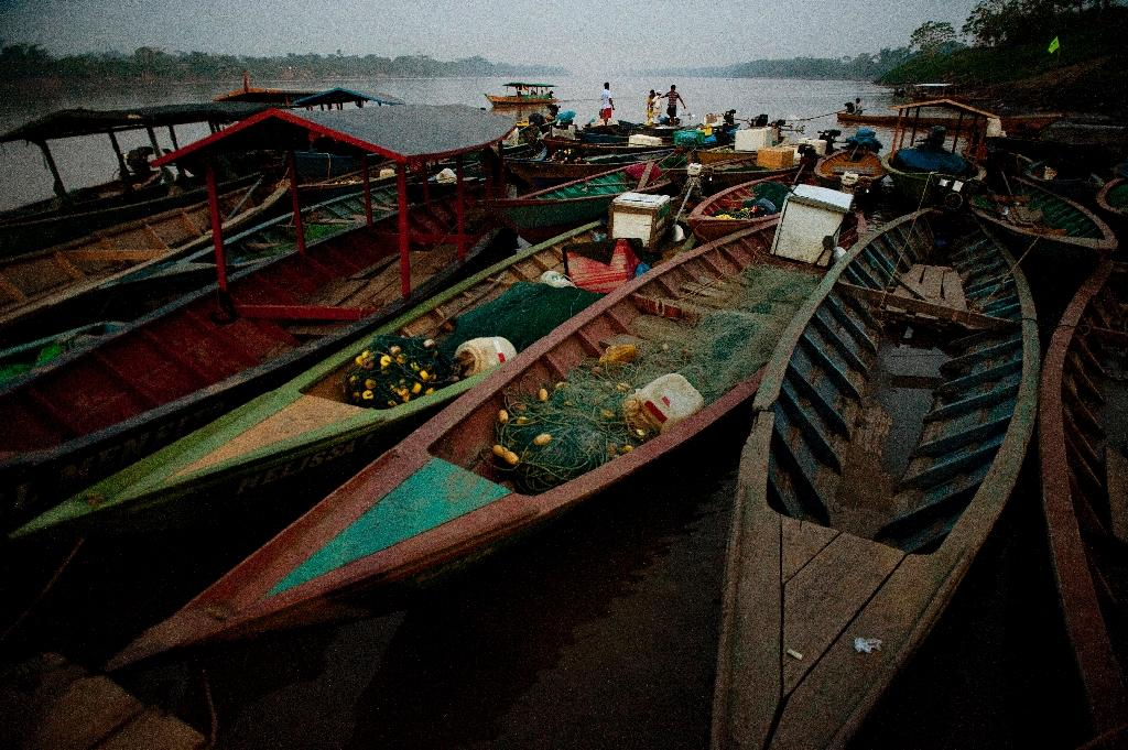 Fishing boats lie at sundown tied up on the shore at a port in the Puerto Maldonado city on the banks of the Madre de Dios River near Lima on October 3, 2014