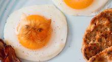 Artista faz montagens transformando gatos em comida e conquista diversos seguidores