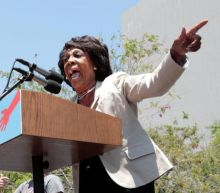 Maxine Waters Tells Protesters to 'Stay in the Street,' Be 'More Confrontational' If Chauvin Acquitted