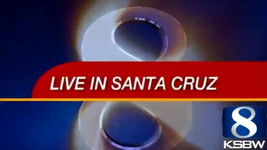 Mountain Lion Spotted In Downtown Santa Cruz