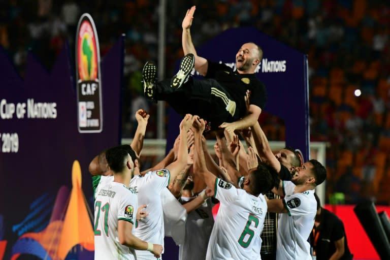 Djamel Belmadi celebrates with players