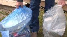 Dead rats, old food are contaminating blue bags and fouling this recycling plant