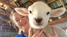 Spinning some yarns: Small farm gets help to create woolen mill
