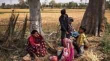 'Coronavirus Can't Attack Me, It's Weakened': As Cases Rise in Rural India, Villagers Tire of Restrictions