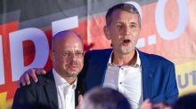 Politiker sehen AfD trotz Kalbitz-Rauswurf weiter auf Rechtskurs