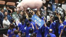 瘦肉精美豬民調曝光 正妹藍委4點怒轟政府:突襲台灣民眾