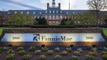 Housing expert: 'The government has looted' Fannie Mae and Freddie Mac
