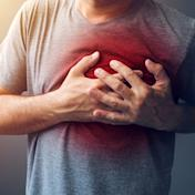 【香港浸會大學中醫藥學院專欄】動脈粥樣硬化患者甘油三酯升高的中藥治療