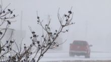 PHOTOS: Power outages as storm brings heavy snow, freezing rain to Manitoba