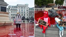 Vegan activists' bloody stunt at popular tourist attraction