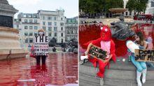 Vegan activists' bloody stunt at popular tourist attraction