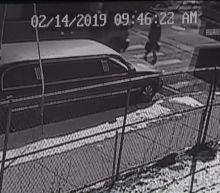 Bronx Woman Killed in Hit-and-Run Involving School Bus