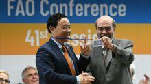 El nuevo director chino de la FAO ser un aliado de Amrica Latina?