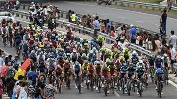 Radsport: Bei Vuelta: Cannabis-Plantage entdeckt