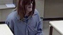 Pittsburgh police, FBI looking for wig-wearing bank robber