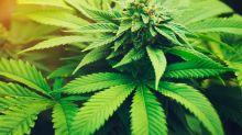 A Major Marijuana Milestone Is Less Than 2 Months Away