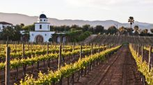Valle de Guadalupe: How Mexican wine country is giving California a run for its money