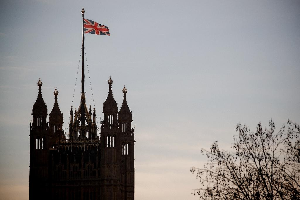 The OECD has warned that a disorderly no-deal Brexit would likely pitch Britain into a recession and the knock-on economic effects could spill over into Europe and beyond (AFP Photo/Tolga AKMEN)