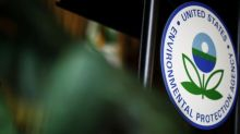 Trump intervention delaying EPA biofuel waiver action, sources say