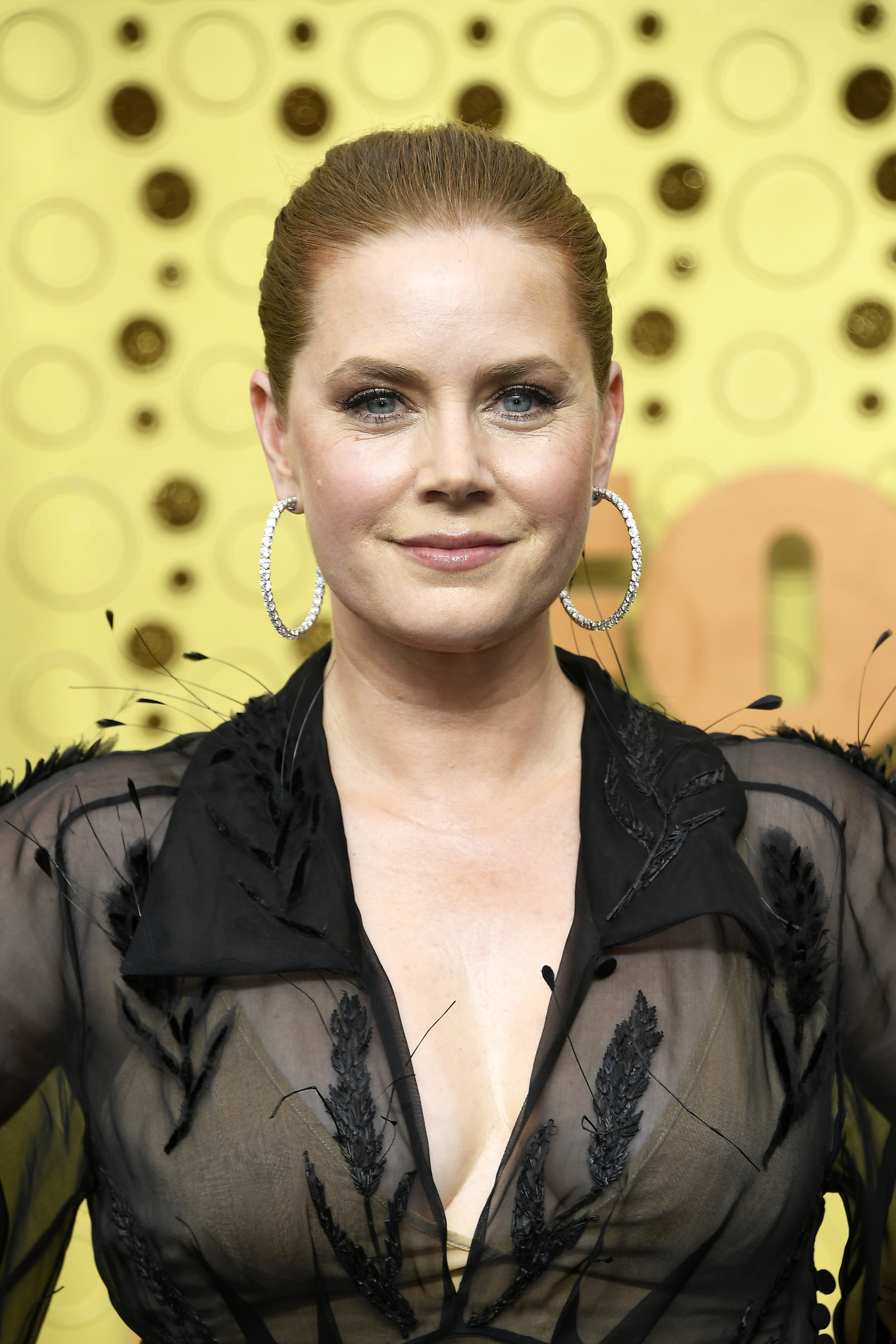Amy Adams Made Her Emmys Debut in a Sheer Dress