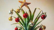 Pinterest: Das sind die Weihnachtstrends 2017