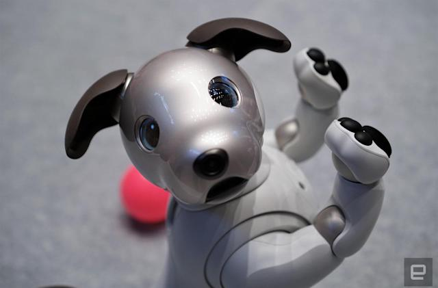 Sony's reborn Aibo robot is available for pre-order in the US