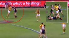 'Dog act': Hawk slammed for hit on Carlton star
