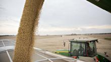China Erred in Putting Tariffs on Soybeans, Says Former Official