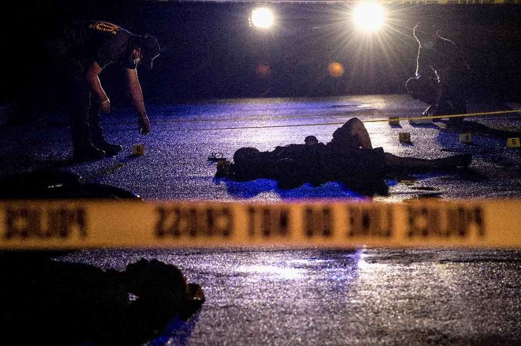 Senator Leila de Lima has called on ordinary Filipinos to stand up in opposition to President Rodrigo Duterte's drug war, which has seen more than 6,500 people killed since he took office eight months ago (AFP Photo/Noel CELIS)
