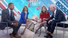 Service Dog Sully Fulfills George H.W. Bush's Wish by Meeting Captain Sully Sullenberger