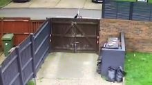 Air mail: Watch 'unprofessional' DHL driver throw £110 package over garden fence