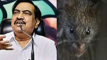 BJP leader Eknath Khadse alleges rodent scam, asks how 31 rats can be killed in a minute