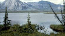 Blue States Sue to Stop Trump's Arctic Refuge Drilling Plan
