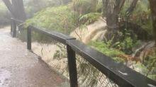 Tormentas en las zonas afectadas por los incendios en Australia causan inundaciones y bloqueos