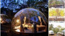 日本超靚透明露營屋 圓拱形設計有冷氣