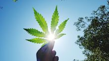 New Cannabis Products Which Could Disrupt the Industry in 2020