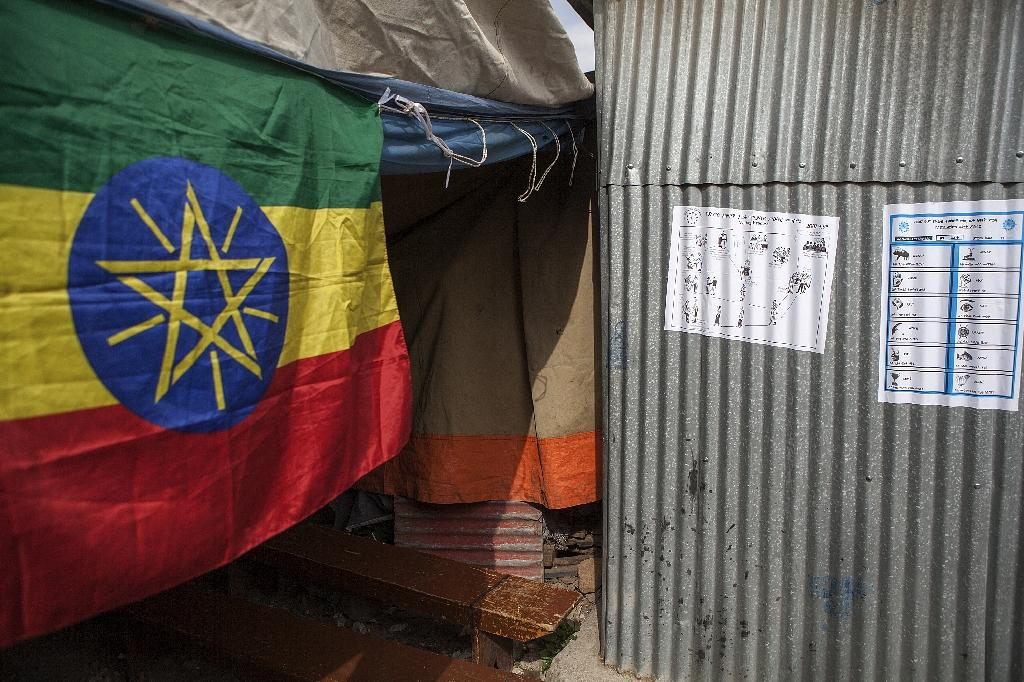 The central star was imposed on Ethiopia's flag by the ruling People's Revolutionary Democratic Front (EPRDF) when it took power in 1991 (AFP Photo/Zacharias Abubeker)