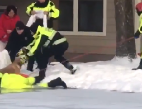 Retriever Retrieved: Firefighters Rescue Dog From Icy Pool at Cincinnati  Apartment Block