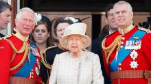 Prince Charles takes over key role held by Prince Andrew
