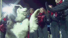 NIU soliciting donations for statue depicting former husky mascot high-fiving
