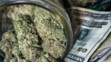 3 Marijuana Stocks With Forward P/E Ratios Under 20