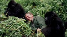 David Attenborough warns that 'humans have overrun the world' in new Netflix doc 'A Life On Our Planet'