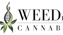 WEED, Inc. (OTC:BUDZ) to Present its $40 Million RegA+ Offering at Starlight Capital's Investment & Technology Conference tomorrow March 25th, 2021