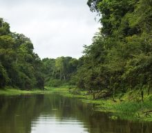 A Canadian Man Was Lynched in the Amazon After Being Accused of Murdering a Shaman