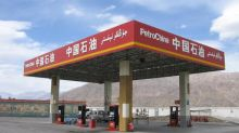 PetroChina (PTR) Carries Out Internal Transfer of 16 Blocks