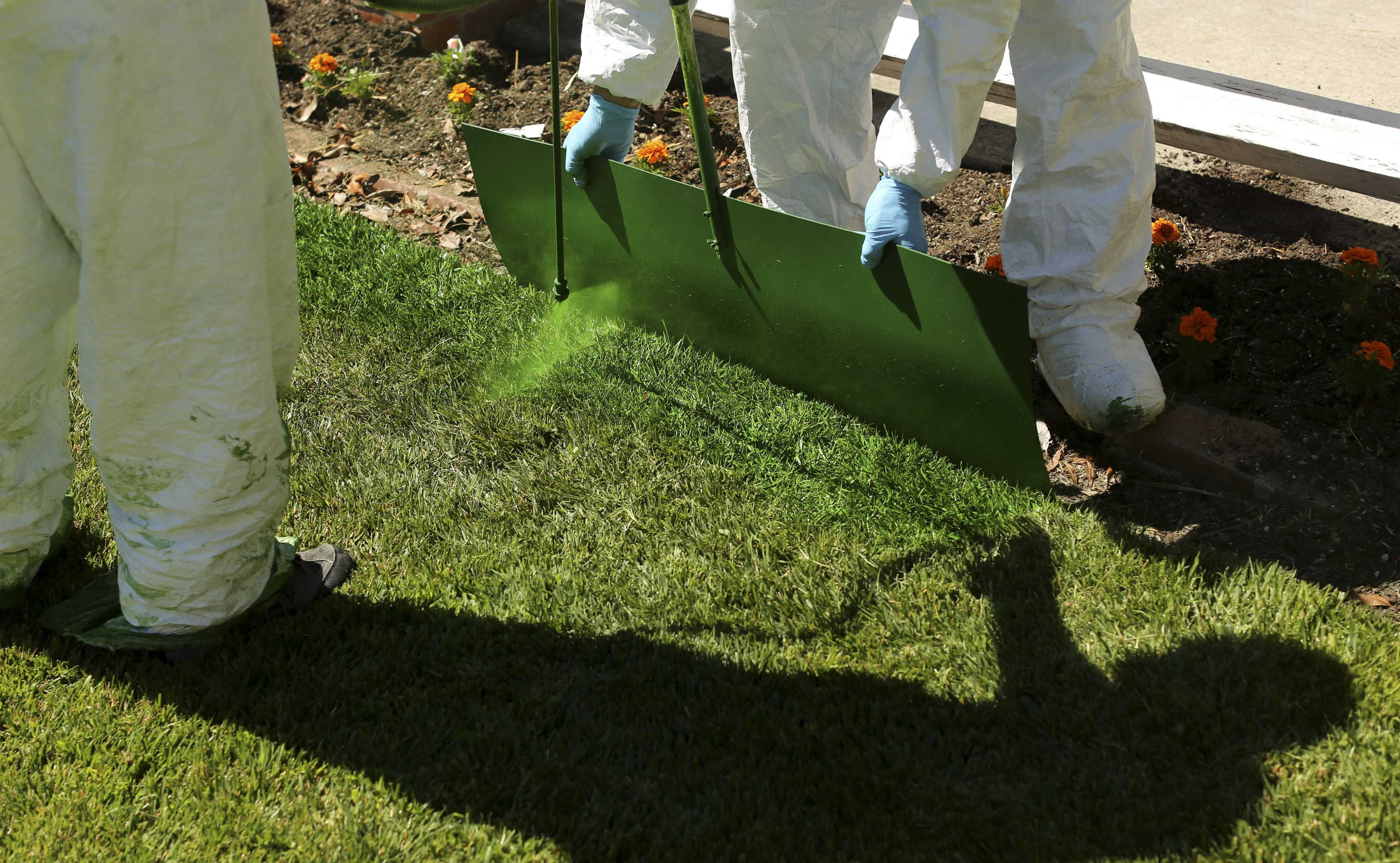 Green Canary workers apply a diluted concentrate of aqueous pigment to the front lawn of a home in San Jose, California July 24, 2014. The company said it uses the coloring application to improve property value, conserve water, and reduce maintenance costs. REUTERS/Robert Galbraith (UNITED STATES - Tags: ENVIRONMENT)
